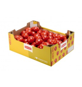 carton de Tomates rondes